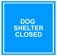 dog-shelter-closure