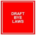 bye-laws